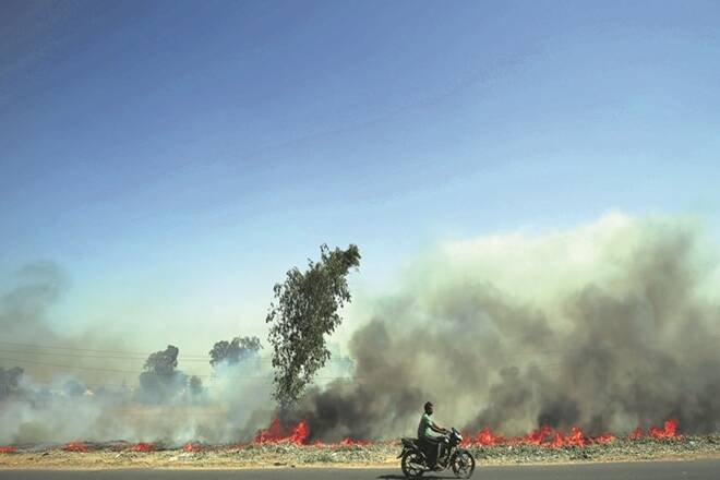Top court summons chief secys of 4 states over stubble burning incidents