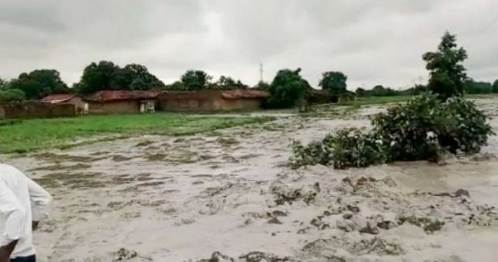 Expert committee recommends imposing huge fines on NTPC, Essar Power for ash dyke breaches in Singrauli