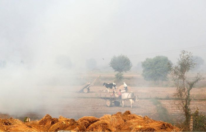 Study: Air pollution levels in rural India almost as bad as metros