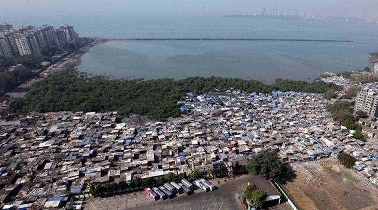 Indian govt ignored 90% objections to new coastal zone law