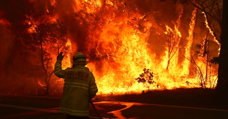 Massive amounts of land, flora & fauna destroyed in deadly, unrelenting Australian bushfires