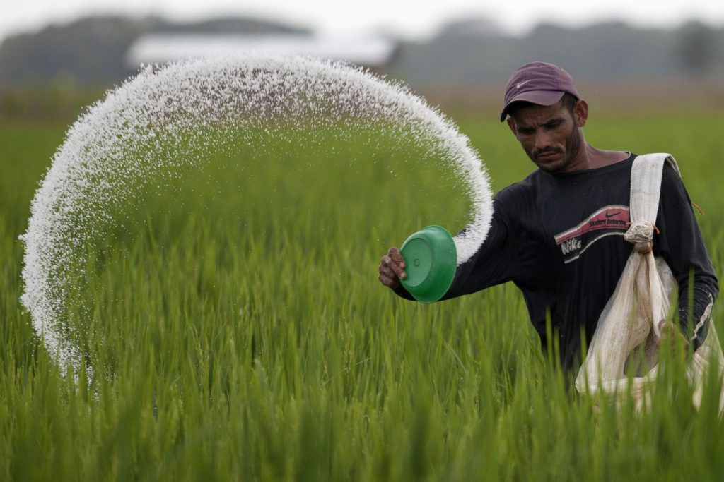 Rising levels of N2O from nitrogen-based fertilisers hampering climate progress: Study