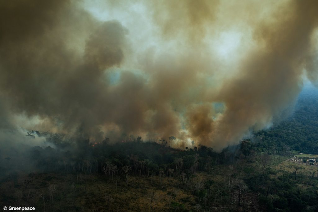 Amazon fires: Brazil govt says situation returning to normal, but experts warn 'the worst is yet to come'