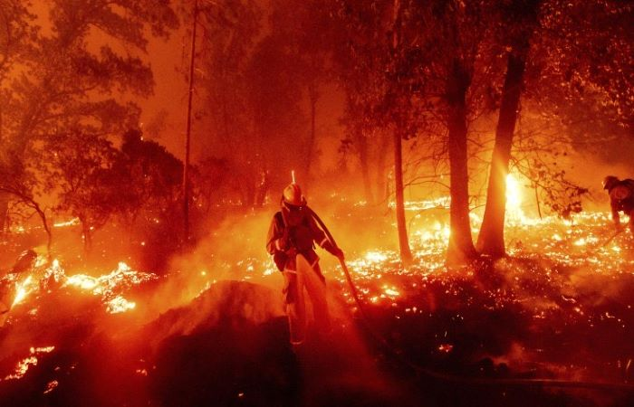 Wildfires continue to blaze through US west coast; California guv calls it 'climate emergency'