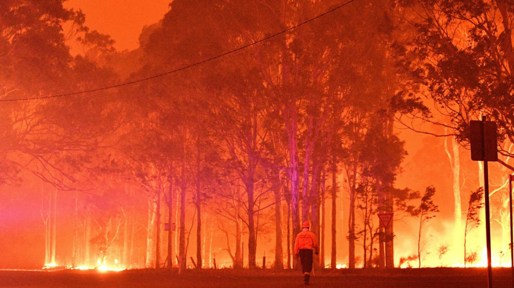 Climate crisis is top risk the world is facing: World Economic Forum report