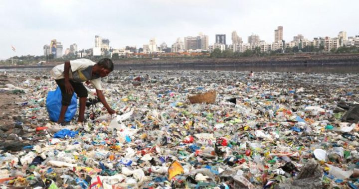 CPCB fines states for failing to report on waste management plans