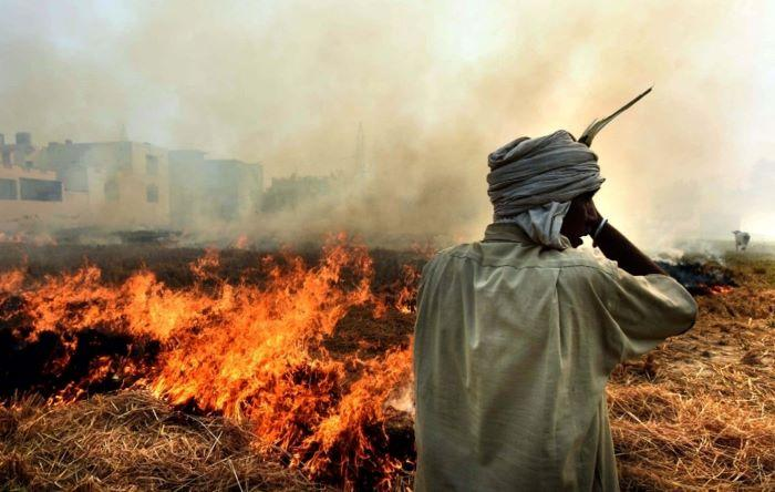 Stubble burning: India to set up National Mission for using biomass in coal plants