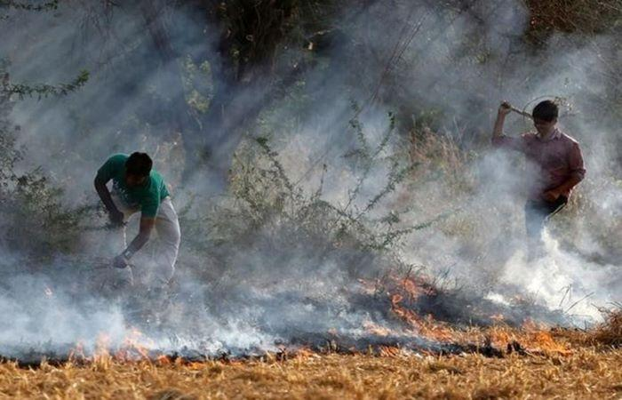 MoEF to table bill for panel on NCR air pollution, drops jail term clause for crop stubble burning