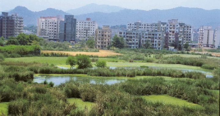 Centre proposes diluting green clearance norms